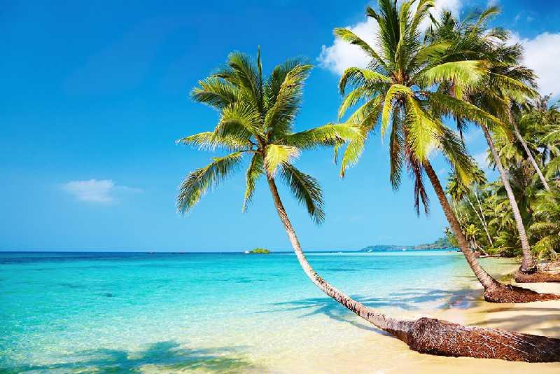 Экскурсии и пляжный отдых