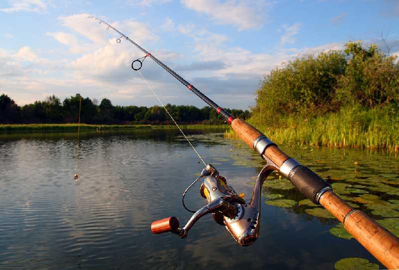 Рыбалка на реке Койда и на Белом море