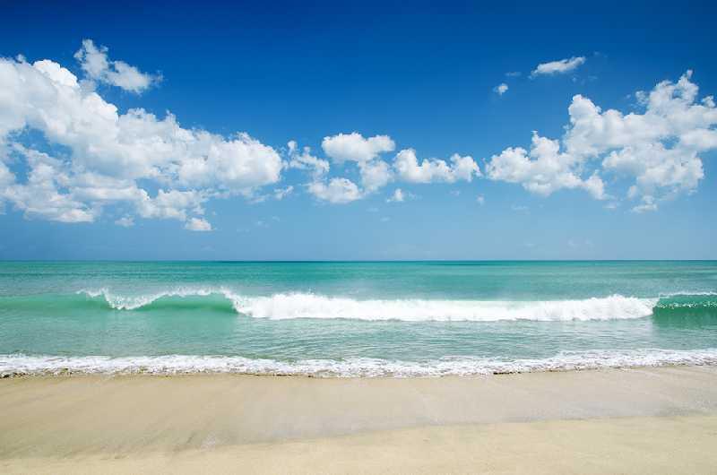 Отель 4-5* пляжный отдых