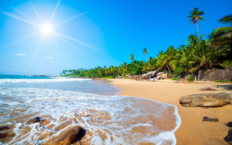 «Южное побережье Шри-Ланки»