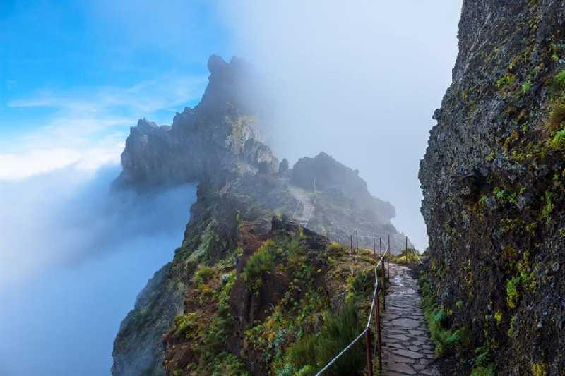 Январское путешествие на остров весны - Мадейра!