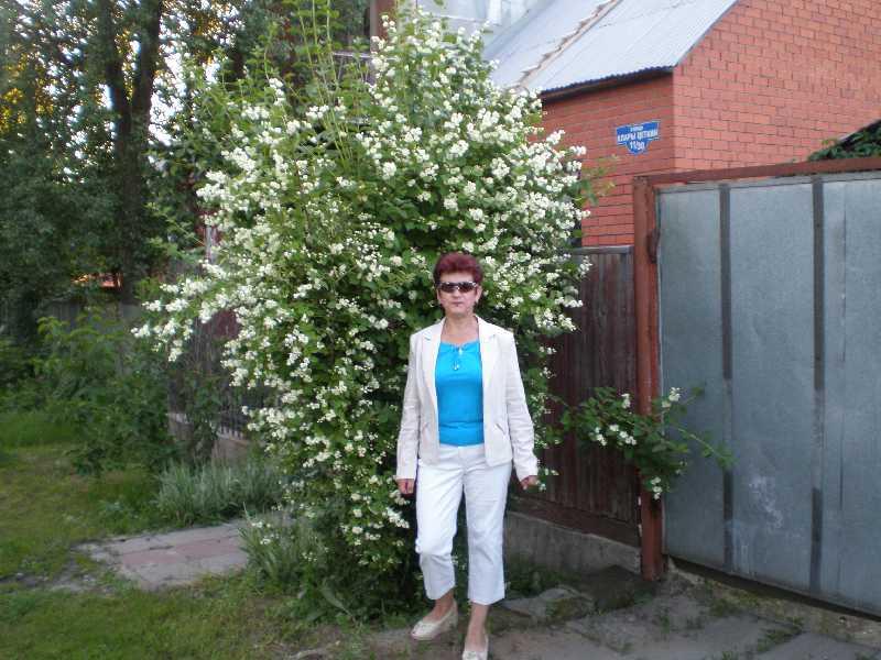 Не люблю ездить одна. Ищу адекватную попутчицу. живу в Москве. Мне 58 лет.