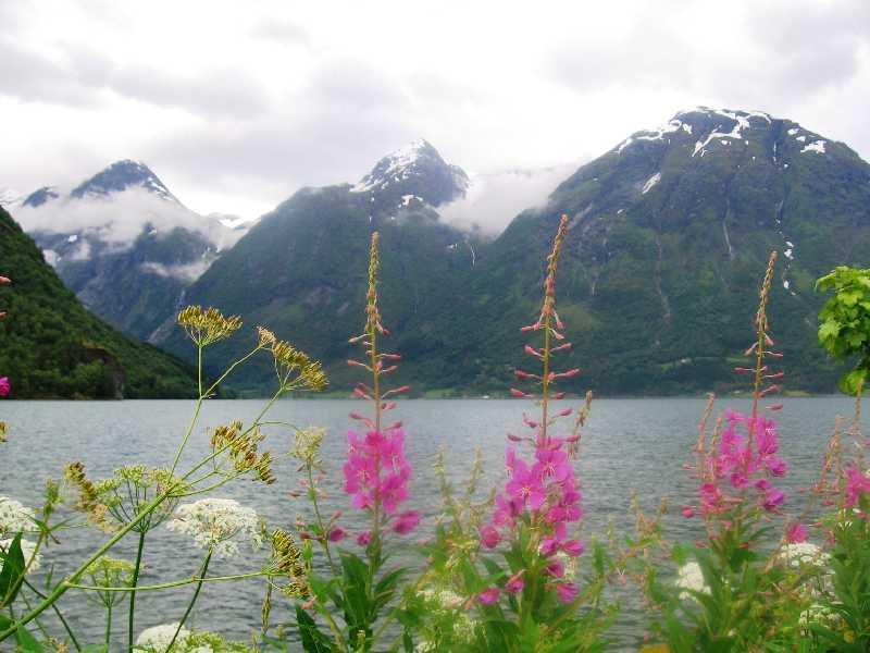 В дикую Норвегию общественным транспортом