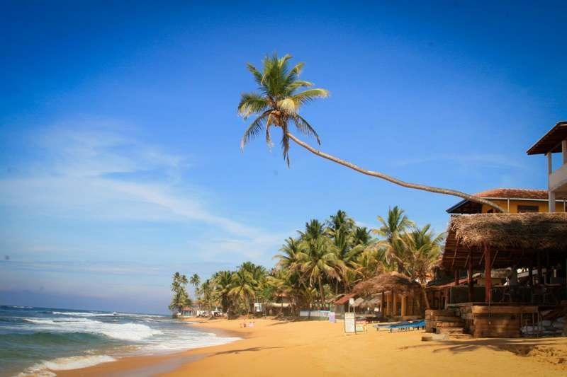 Шри-Ланка на НГ
