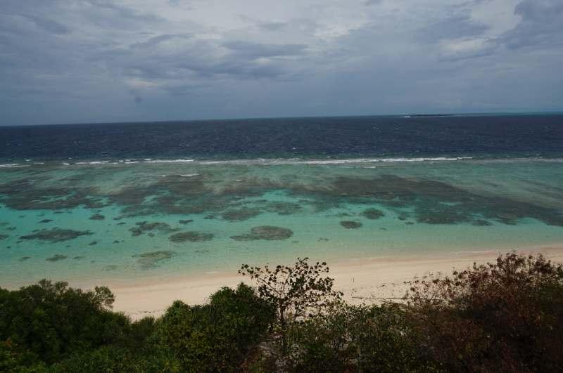 о.Миндоро - о.Пандан - Апо риф. Великолепный отдых в отличной компании. Дайвинг по желанию.