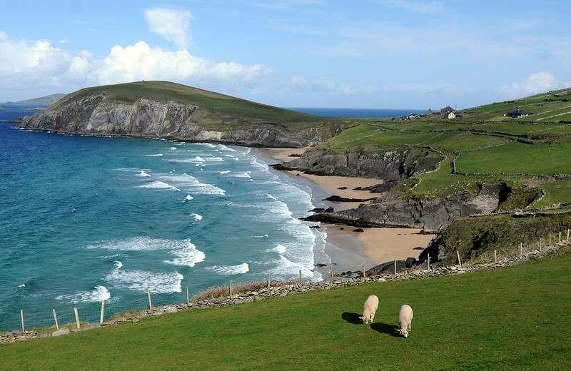 Хочу посетить Ирландию в августе, буду рада найти попутчиков с л/а. Коротко о себе: художник,...