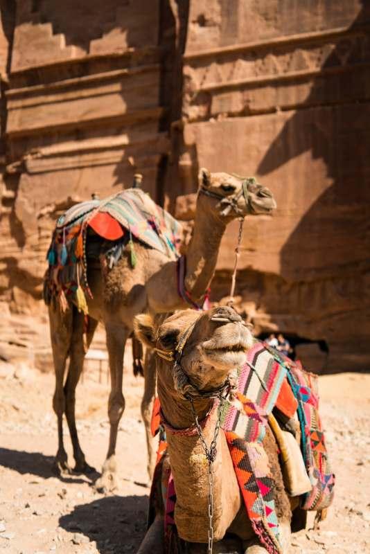Майские праздники в Иордании