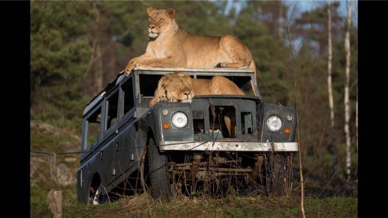 Экспедиция по ЮАР с эктремальными активностями