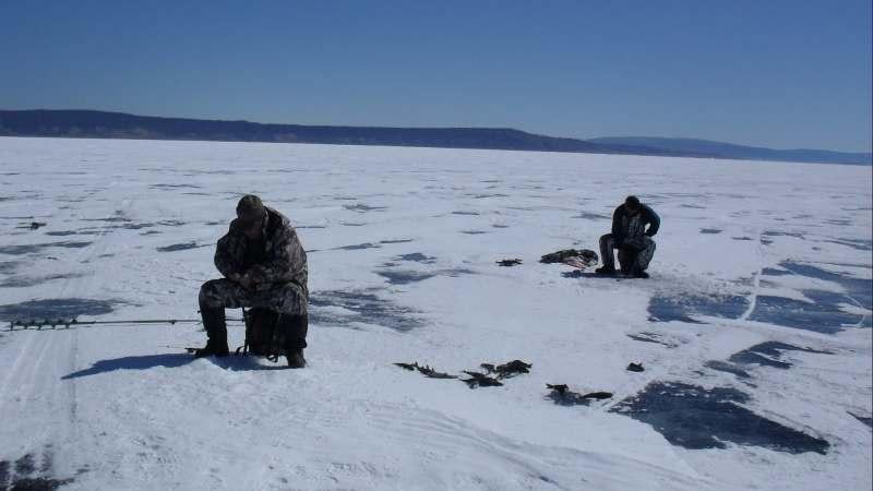 автомобильный тур по льду Хубсугула (Монголия). Подледная рыбалка. Блюда из свежего мяса....