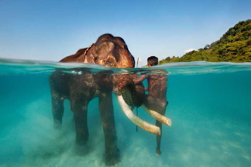 Индия (Нью-дели,Ришикеш) + Андаманские и Никобарские острова