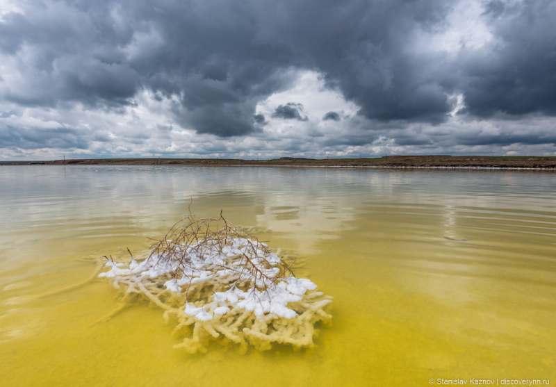 Ищу компанию для поездки на соленое озеро Баскунчак, Астраханская область. Если вы на машине, то...