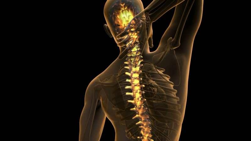 В Квебек с 2 по 7 июля на конференцию боли в спине