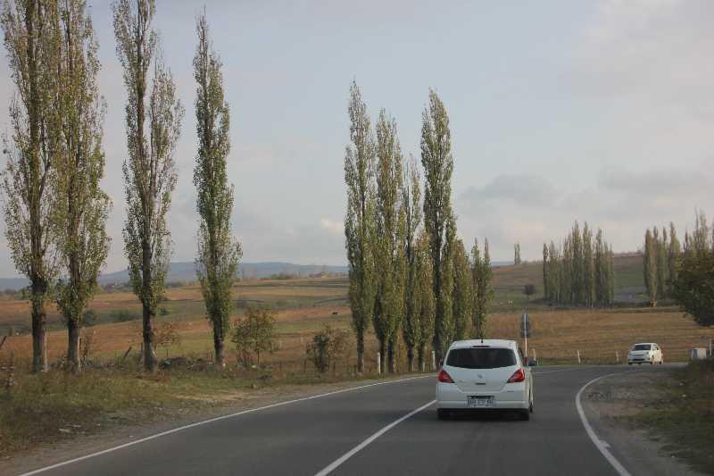 """Джип тур """"Осенью в Грузии тоже красиво""""."""
