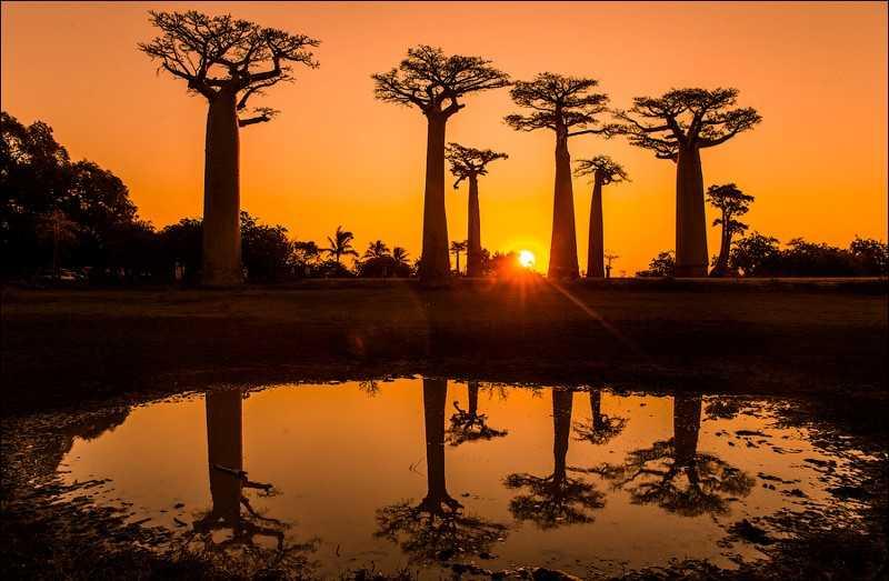 Мадагаскар октябрь 2017