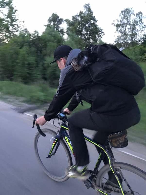 Велоэкспедиция по Памирскому тракту. Приглашаю Всех желающих составить мне компанию в столь не...